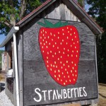 Strawberry Barn