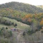 Fall at the Orchard